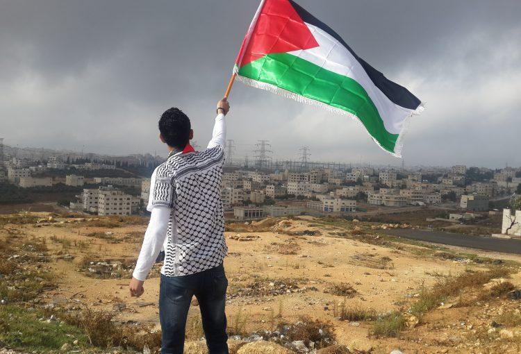 LFT Gaza Palestine 🇵🇸
